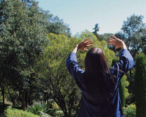les-saisons-du-qi-cours-stages-qigong-taichi-jardins-fontaine-nimes-2019