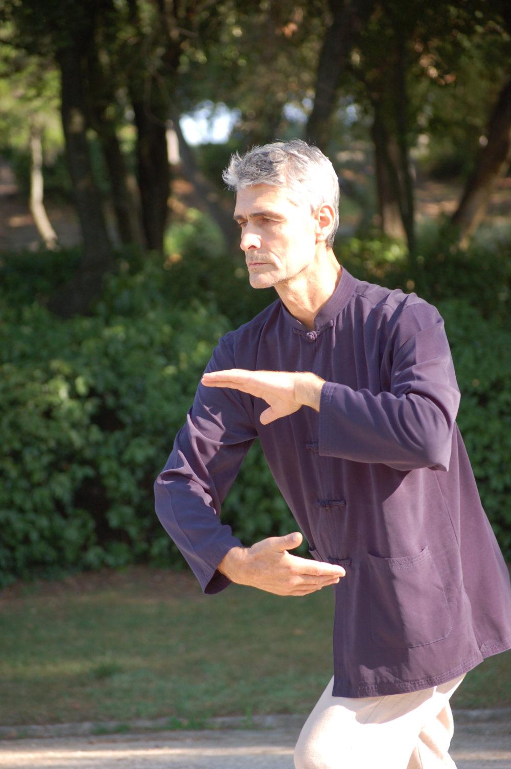 cours et stages -qigong taichi chuan - jardins fontaine nimes - les saisons du Qi
