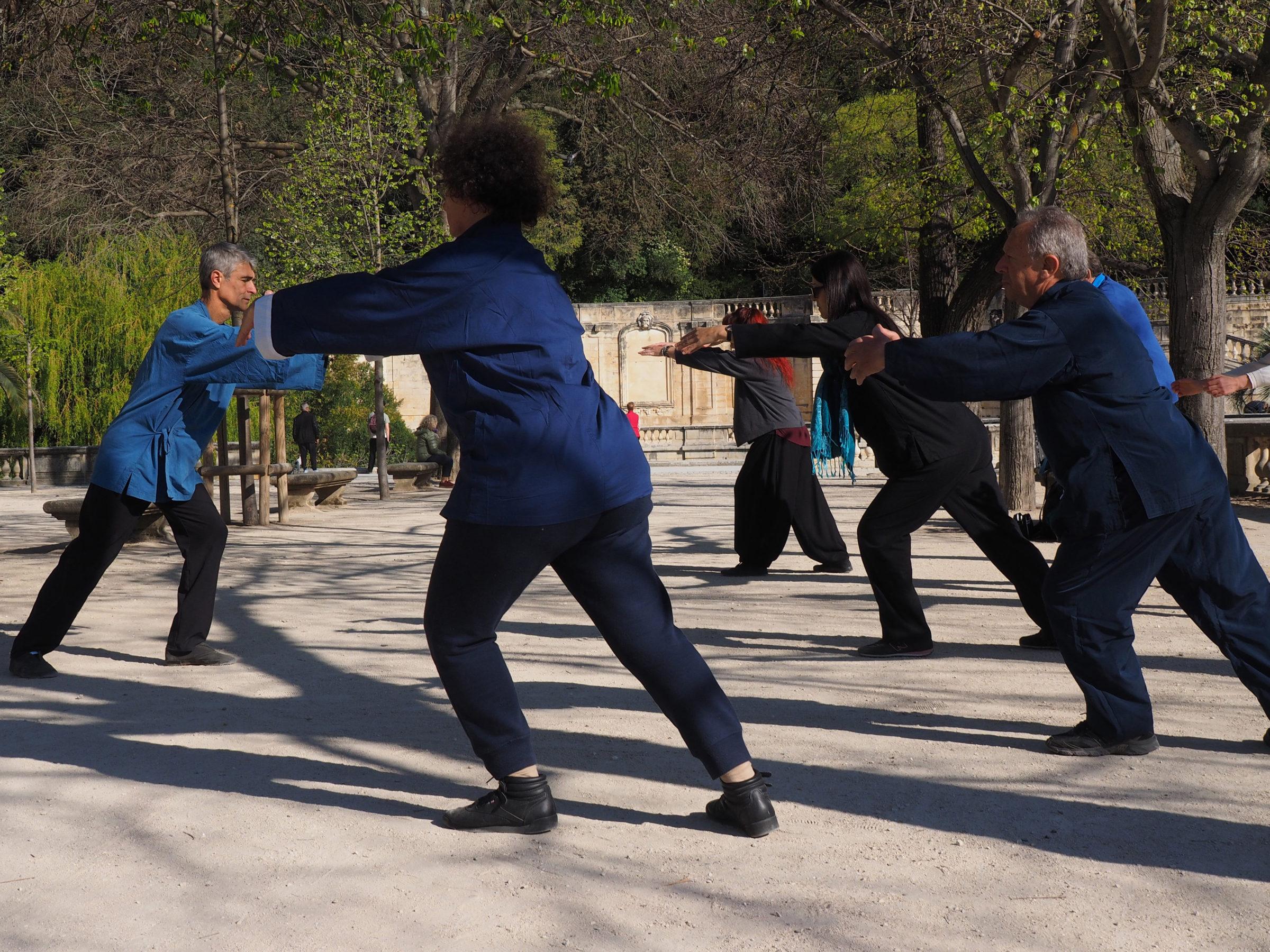 cours et stages -qigong taichi - jardins fontaine nimes - les saisons du Qi