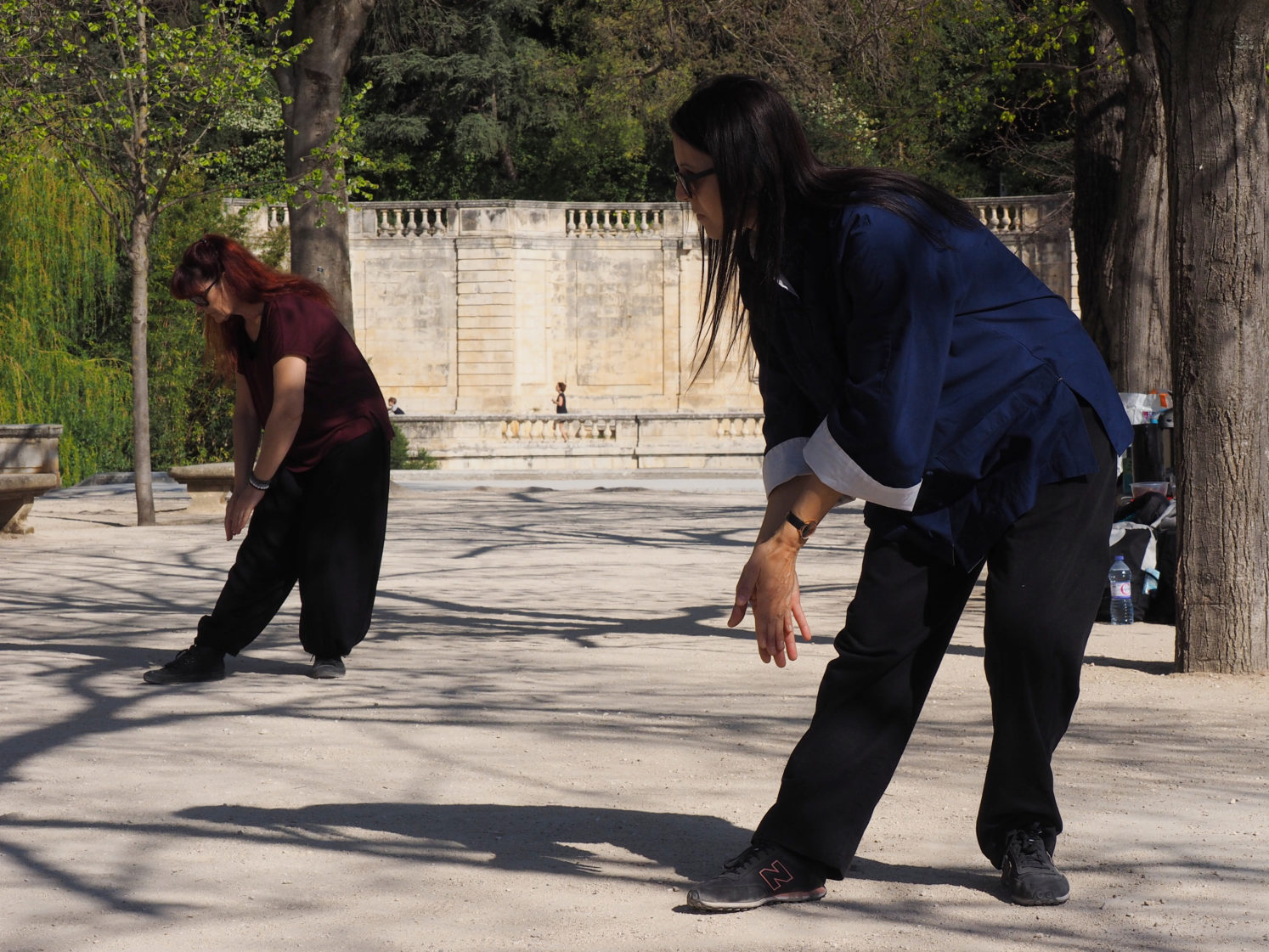cours et stages qigong taichi : jardins fontaine nimes
