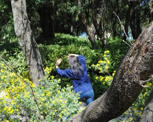 les-saisons-du-qi-cours-stages-qigong-taichi-jardins-fontaine-nimes-2019-29